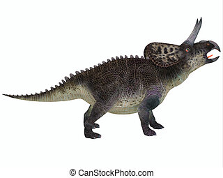 Zuniceratops on White - Zuniceratops was a genus of...