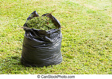 Grass in garbage bag - Green grass in black color garbage...