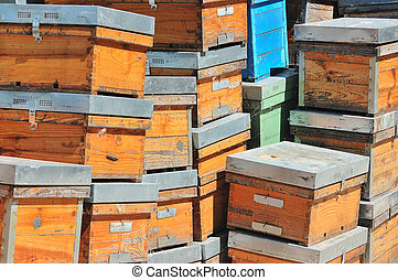 empty hives stacked waiting for new tenants