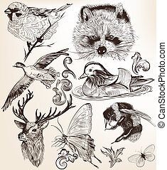 Vector set of detailed hand drawn animals in vintage style -...