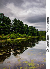 Reflections of pines trees and storm clouds in a pond in rural York County, Pennsylvania.