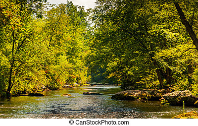Serene view of the Gunpowder Falls, in Baltimore County, Maryland.