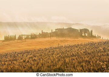 image of typical Tuscan landscape - Early morning on...