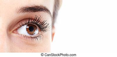 Beautiful eye. - Beautiful eye close up. Isolated on white...
