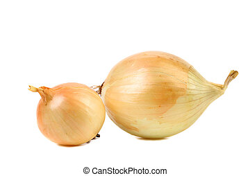 Goldish onions - Goldish onions isolated on a white...