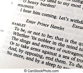 Shakespeare\'s Hamlet To be or not to be