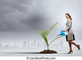 germoglio, donna, irrigazione, affari