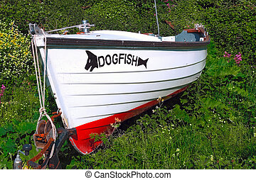 Dogfish Boat Abandoned - Boat abandoned in shrubs at...