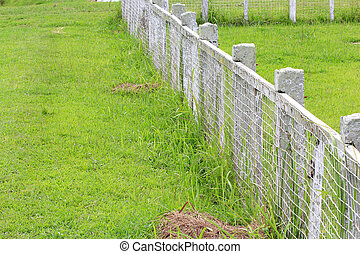 Wooden fence on nice green