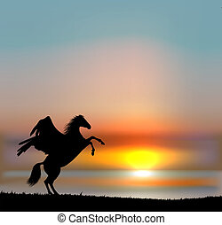 Vector pegasus on sunset sky