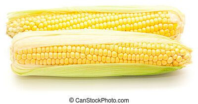 sweetcorn isolated on white