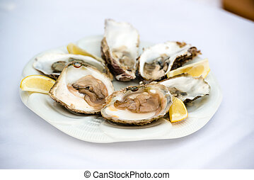 Oysters and lemon - Half a dozen oysters and lemon on a...