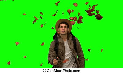 Man walking under leaves falling on green screen in slow...