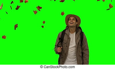 Cheerful man standing under leaves falling on green screen...