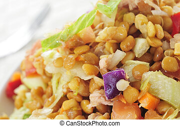 lentil salad - closeup of a plate with refreshing lentil...
