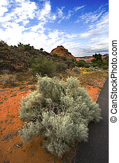 Bushes, Sand and Redrocsk in Snow Canyon - Utah - Snow...