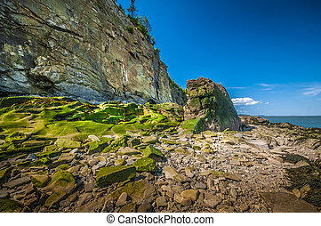 Cape Enrage - Eroded cliff and beach located in Cape Enrage...