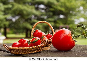 Minature Baskets of Tomatoes - Minature baskets of tomatoes...