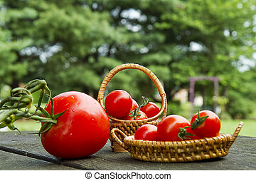 Cherry Tomatoes in Minature Basket - Minature baskets...