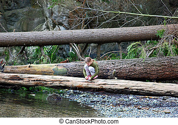 Young Girl Squatting on Log in Forest - Young girl is...