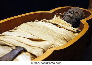 Open casket of Egyptian mummy - Close view of an open casket...
