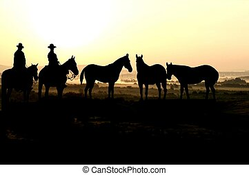 Cowboy and herd at sunrise