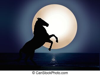 Stallion under full moon light