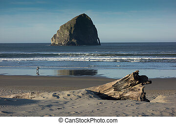 Lone surfer - A lone surfer walks along an Oregon coastal...