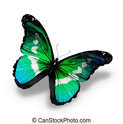 Morpho blue green butterfly , isolated on white background