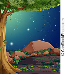 A rocky forest - Illustration of a rocky forest