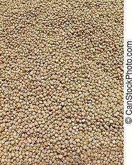 Sorghum bicolor, Jawar Grains