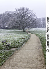 Winter Walk - A view along a path in a park or heath on a...