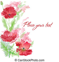 Red poppies - Background with red poppies in watercolor...