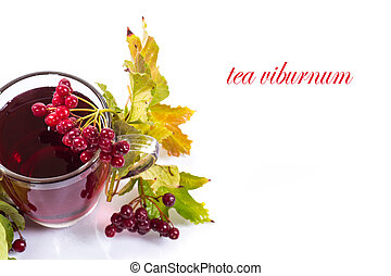 tea viburnum in a cup on a white background