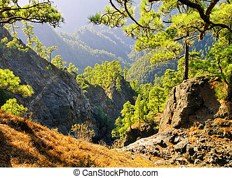 Caldera de Taburiente National Park on La Palma - National...
