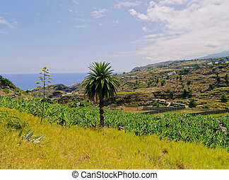 La Palma, Canary Islands - Landscape of the island La Palma,...