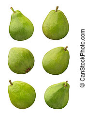 Guava isolated on a white background