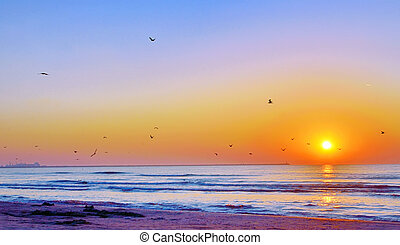 Beautiful sunrise on Black Sea beach in summer time