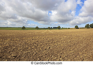 plowed stubble - agricultural landscape with a plowed...