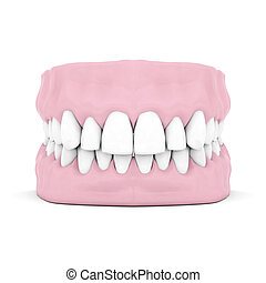 Dentures isolated on a white background