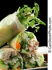 Vietnamese Rice Paper Rolls 3 - Delicious and healthy...