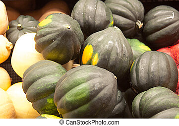 Fresh Green Squash - Fresh green squash grouped for sale in...