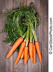 Bunched carrots - A bunch of fresh carrots on vintage style...
