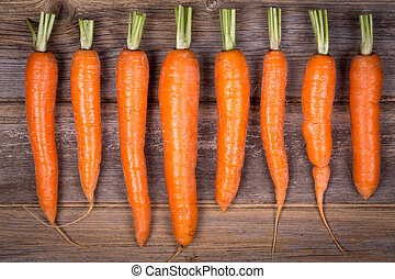Trimmed carrots in a row - A row of trimmed fresh carrots on...