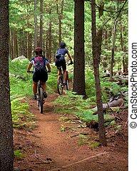 Mountain Biking - Two mountain bikers hiking a hill in the...