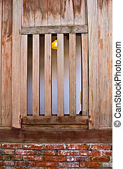Old traditional wooden Window - Taipei Monga Old traditional...