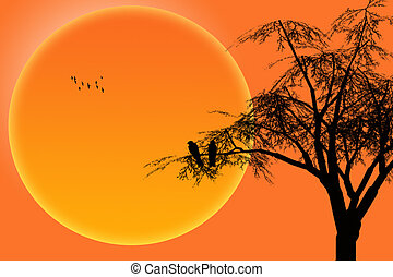 silhouette birds on branch tree