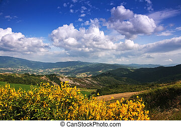 Landscape le Marche, Italy, in spring with bluw sky