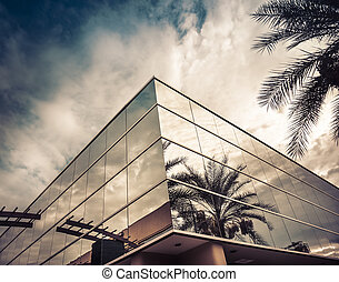 Modern office building with palm tree reflecting in glass