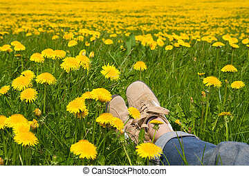 Person relaxing in a spring meadow - Person relaxing in a...